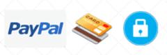compra segura pago con tarjeta y paypal